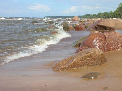 Baltic Sea Amberland Artisans Shop Baltic Amber Agita Grantis